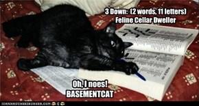 3 Down:  (2 words, 11 letters) Feline Cellar Dweller