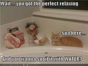 Wait.... you got the perfect relaxing spa here.... And you wanna spoil it with WATER?