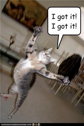I got it! I got it!