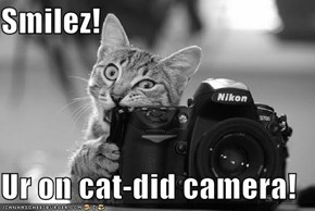 Smilez!  Ur on cat-did camera!