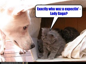 Exactly who waz u expectin' - Lady Gaga?