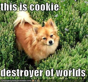 this is cookie   destroyer of worlds