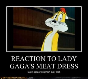 REACTION TO LADY GAGA'S MEAT DRESS