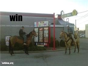 Horses Drive true win
