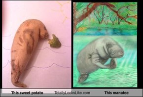 This sweet potato Totally Looks Like This manatee