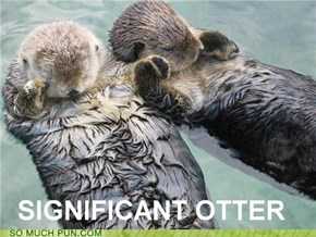There is no otter way