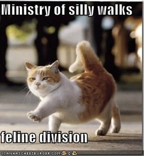 Ministry of silly walks  feline division