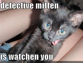 detective mitten   is watchen you