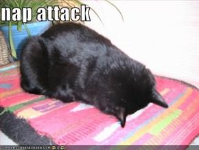 nap attack