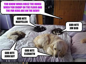 YOU KNOW WHOS RULEZ THE HOUSE WHEN YOU ENDUP ON THE FLOOR AND THE FUR KIDS ARE ON THE BED!!!