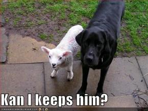 Kan I keeps him?