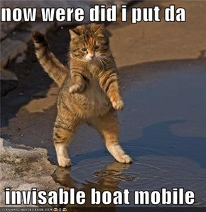 now were did i put da   invisable boat mobile