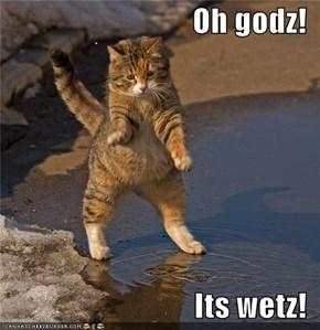 Oh godz!  Its wetz!