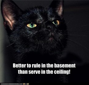 Better to rule in the basement  than serve in the ceiling!