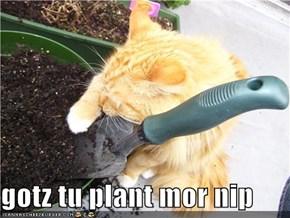 gotz tu plant mor nip