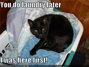 You do laundry later  I was here first!
