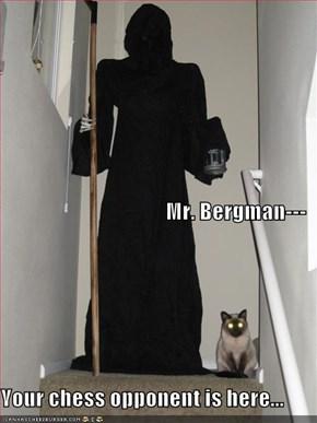 Mr. Bergman