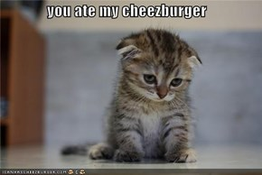 you ate my cheezburger
