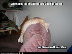 Sometimes the best ideas and sleeping places