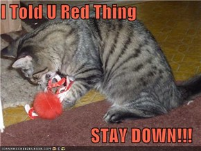 I Told U Red Thing  STAY DOWN!!!