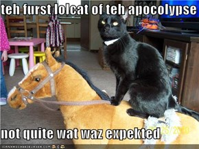 teh furst lolcat of teh apocolypse  not quite wat waz expekted