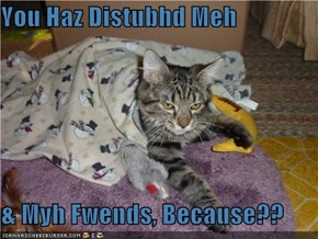 You Haz Distubhd Meh  & Myh Fwends, Because??