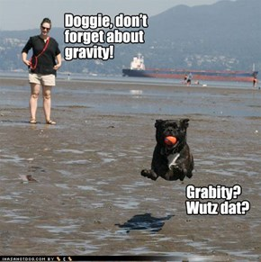 Doggie, don't forget about gravity!
