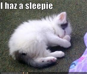 I haz a sleepie