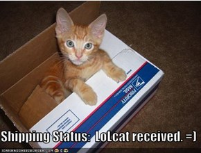 Shipping Status:  LoLcat received. =)