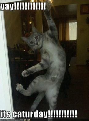 yay!!!!!!!!!!!!  its caturday!!!!!!!!!!!