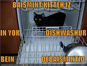 BAISMINT KITTEH IZ    IN YOR                  DISHWASHUR   BEIN                   DEBAISMINTID