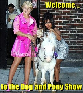Welcome To The Dog And Pony Show!