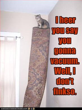 I heer you say you gonna vacuum. Well, I don't finkso.