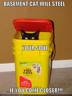 BASEMENT CAT WILL STEEL YOUR SOUL ...IF YOU COME CLOSER!!!
