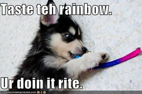 Taste teh rainbow.   Ur doin it rite.