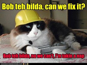 Bob teh bilda, can we fix it?