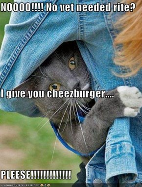 NOOOO!!!! No vet needed rite? I give you cheezburger.... PLEESE!!!!!!!!!!!!!