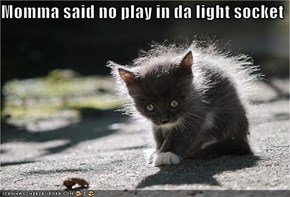Momma said no play in da light socket