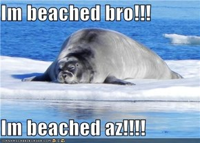 Im beached bro!!!  Im beached az!!!!