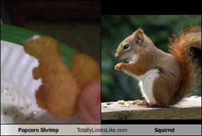Popcorn Shrimp Totally Looks Like Squirrel