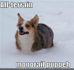 All-terrain  monorail puppeh