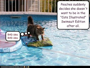 """Peaches suddenly decides she doesn't want to be in the """"Cats Illustrated"""" Swimsuit Edition after all."""
