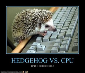 HEDGEHOG VS. CPU