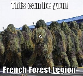 This can be you! ^ French Forest Legion