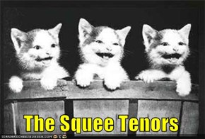 The Squee Tenors