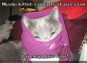 Muslin kitteh vaiolayts shareea law      bai ekspohzin hayr!