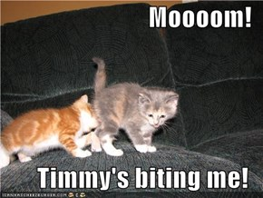 Moooom!  Timmy's biting me!