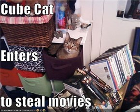 Cube Cat Enters  to steal movies