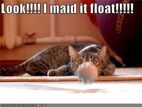 Look!!!! I maid it float!!!!!