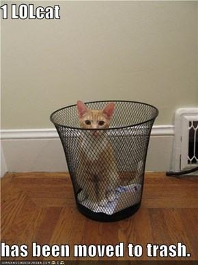1 LOLcat  has been moved to trash.